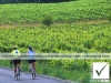 13_photosure_lifestyle_cycling_vinyards_cowichan_canada_001h