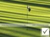 16_photosure_sport_golf_green_put_flag_patterns_001h