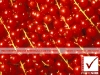 4_photosure_fruit_berry_goose_berries_color_pattern_001h