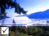 photosure_canada_bc_vancouver_island_malahat_001h