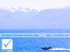 photosure_canada_bc_vancouver_island_victoria_014h