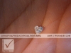 photosure_conceptual_product_special_event_jewel_002h